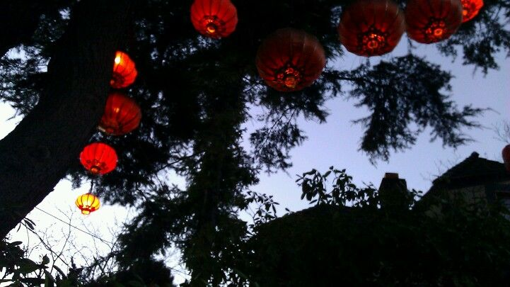 More Chinese lanterns