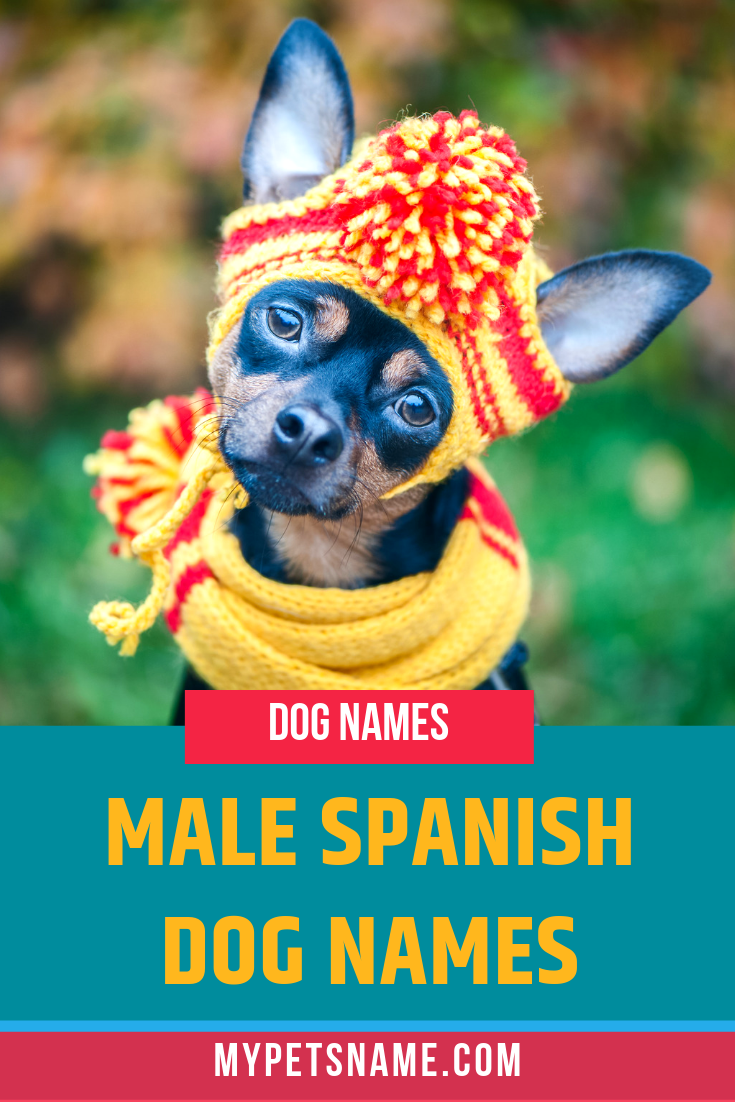 Spanish is spoken all across the Earth, including Mexico