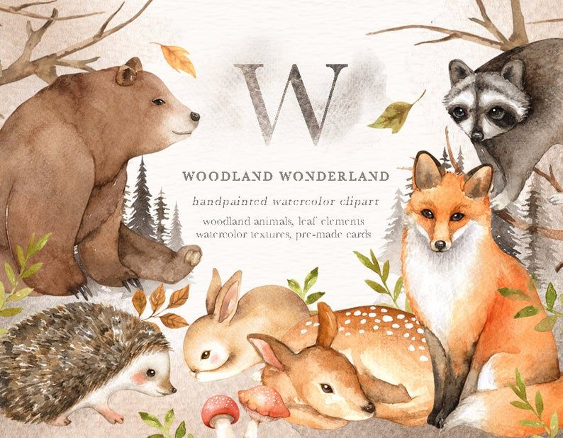Woodland Wonderland Watercolor Clip Art, Woodland Animals
