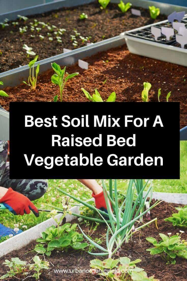Pin On Garden Organization
