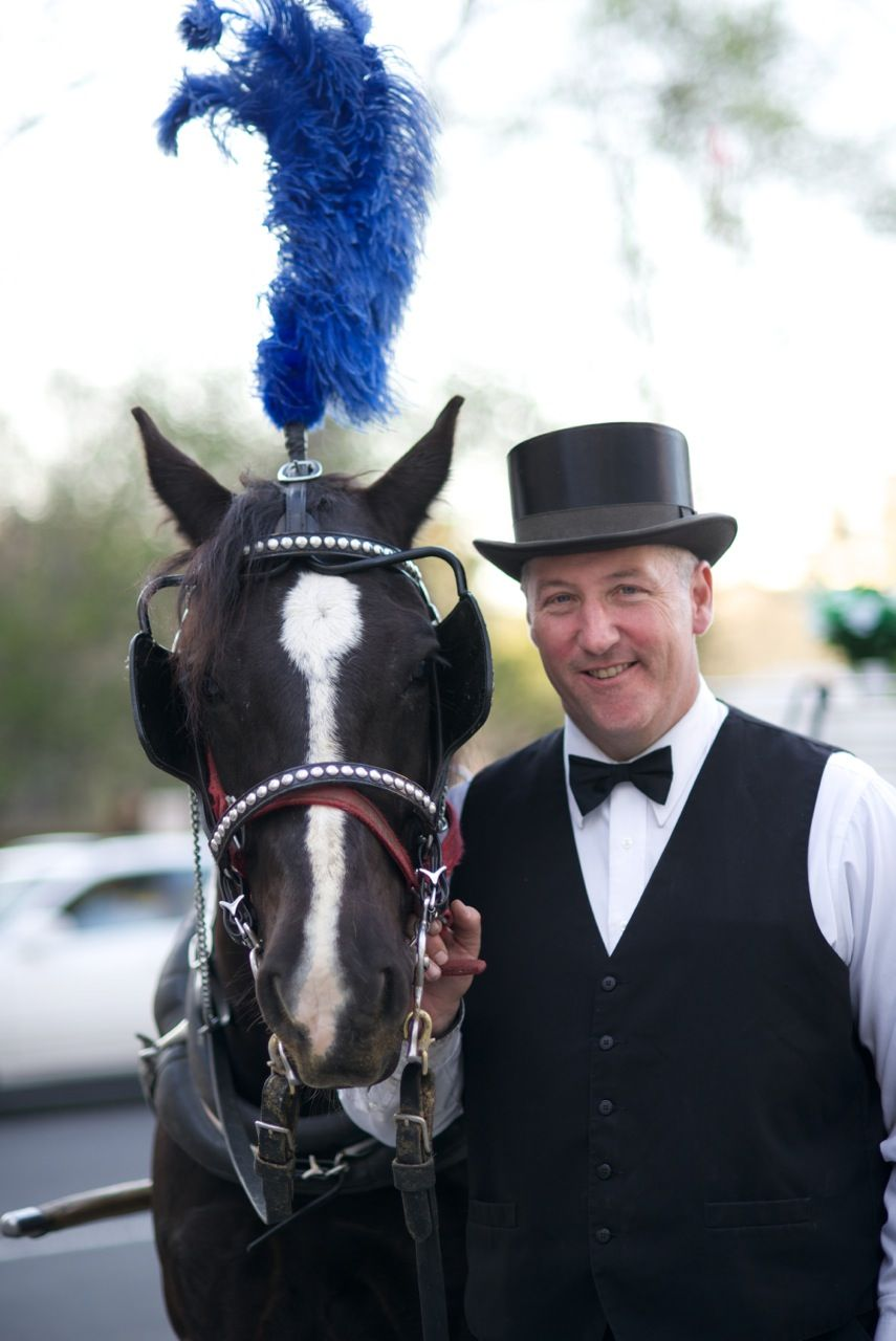Save NYC Horse Carriages - Stop de Blasio's Ban! What The