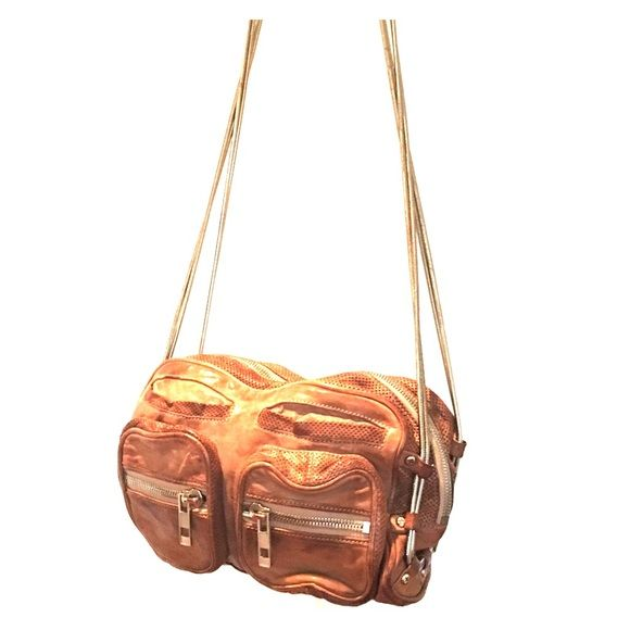 """Alexander Wang Brenda cross body Beautiful rope chain detail with zipper on shoulder. Slightly distressed. Inside is prestige. Perfect size crossbody. Comes with original dust bag. Measures 10""""Lx4""""wx8""""h with 20"""" drop shoulder strap. Alexander Wang Bags Crossbody Bags"""