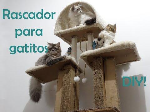 100 Ideas De Dogs Cats En 2021 Accesorios Para Mascotas Accesorios Para Perros Camas Para Perros