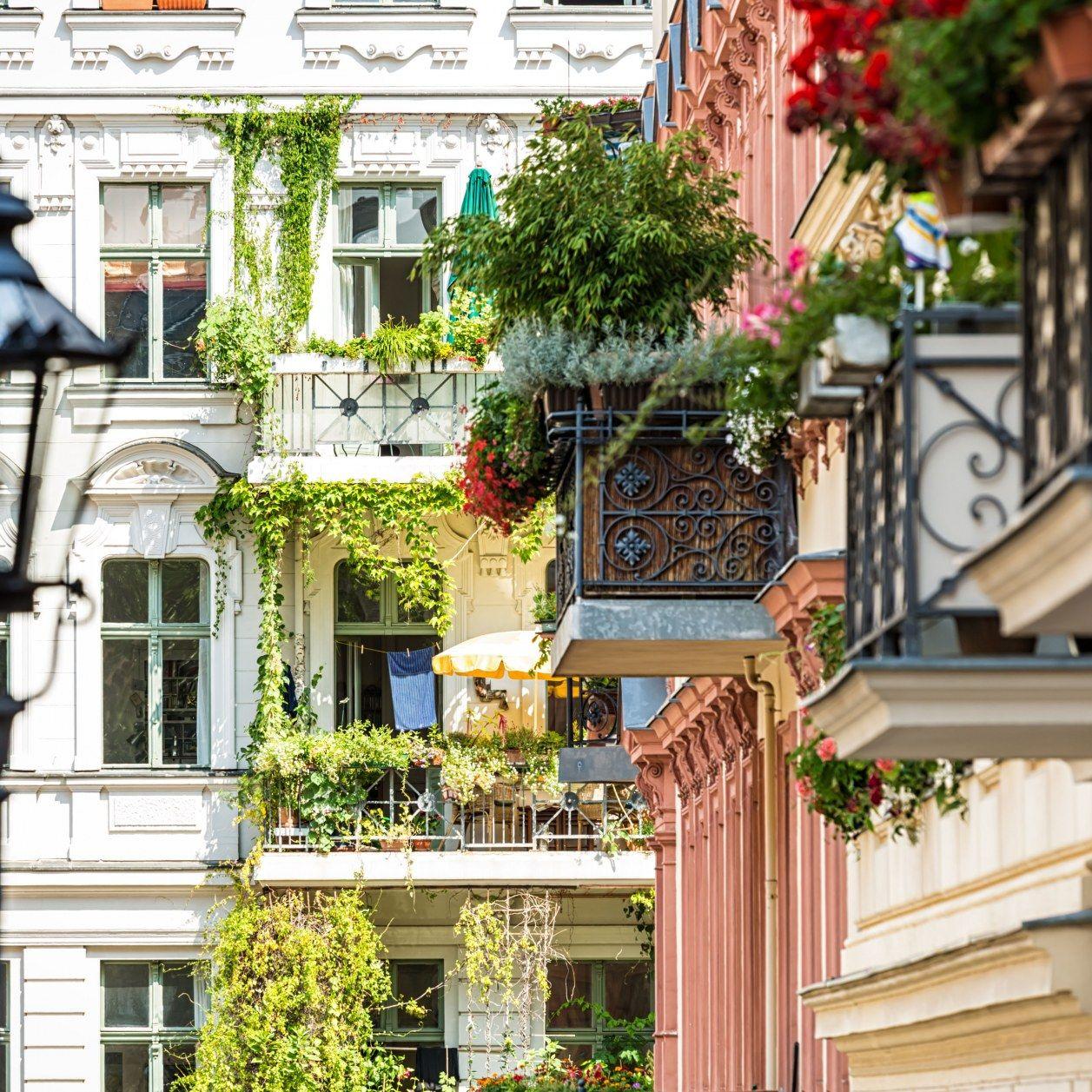 Urban Gardening: 7 Ideen für einen eigenen Gemüsegarten auf dem ...