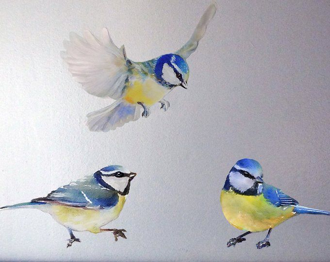 Birds Wall Decals Nursery Murals Nursery Woodland Art Birds In