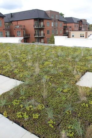 A Growing Trend Green Roofs Begin To Take Root In Newark
