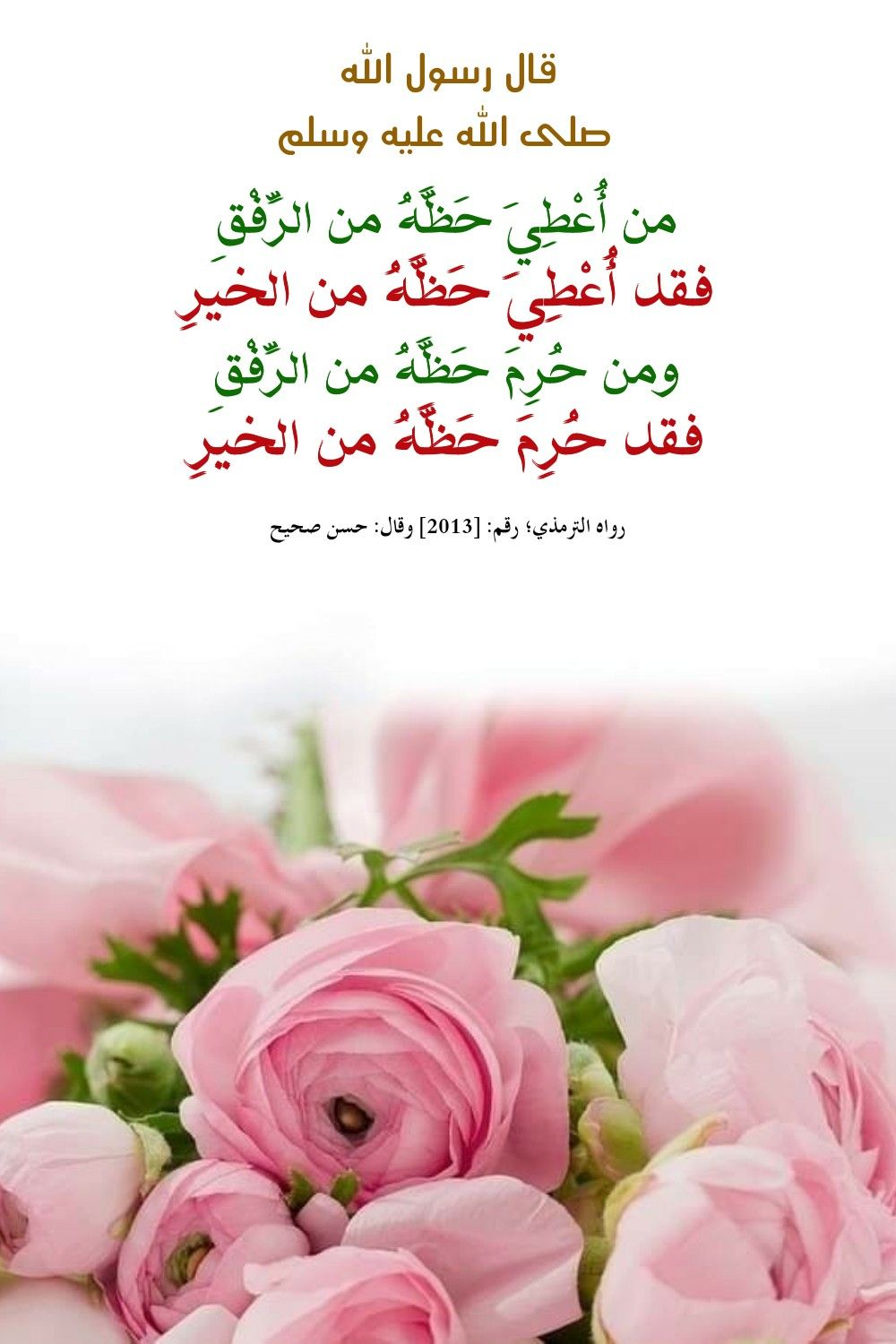 Pin By Sura On احاديث Flowers Rose Ale