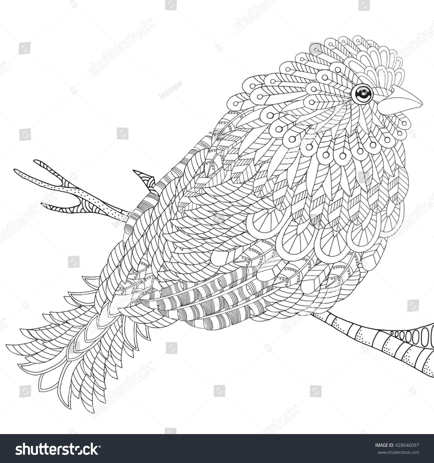Fantastical Bird Coloring Book Amazing Bird With Feathers And