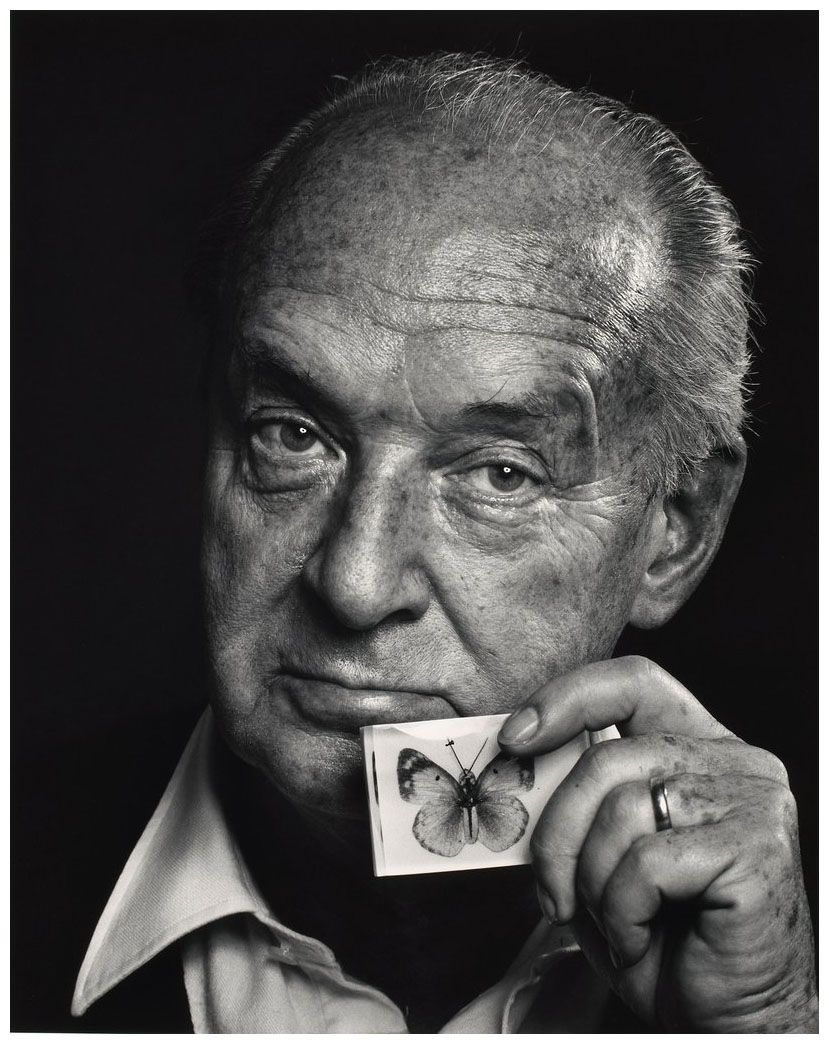best images about vladimir nabokov em russo  17 best images about vladimir nabokov em russo 10421083107210761080769108410801088 104210831072107610807691084108010881086107410801095 1053107210731086769108210861074 gray wolf homework and hunt s