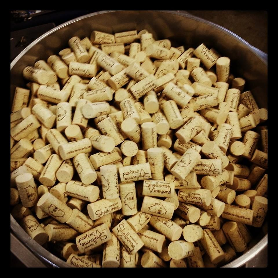 We use natural cork for our bottles and corks are made from the bark of the Cork Oak.