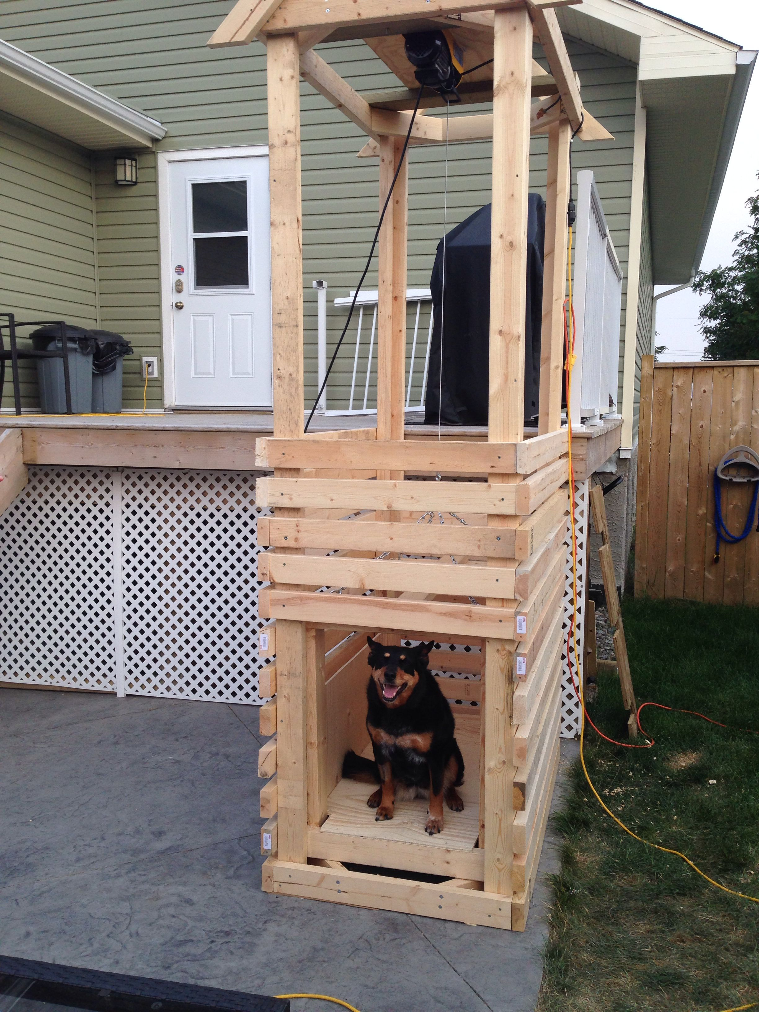 Dog Elevator For My 10yr Old Pup Who S Having Back Surgery Under 400 To Build We Used 2x4 Construction An Pre Fab Tiny House Diy Dog Stuff Diy Woodworking