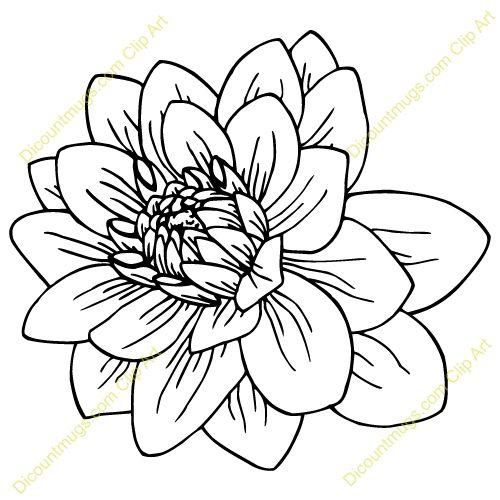 Dahlia Flower Sketches Flower Drawing Flower Tattoo Shoulder