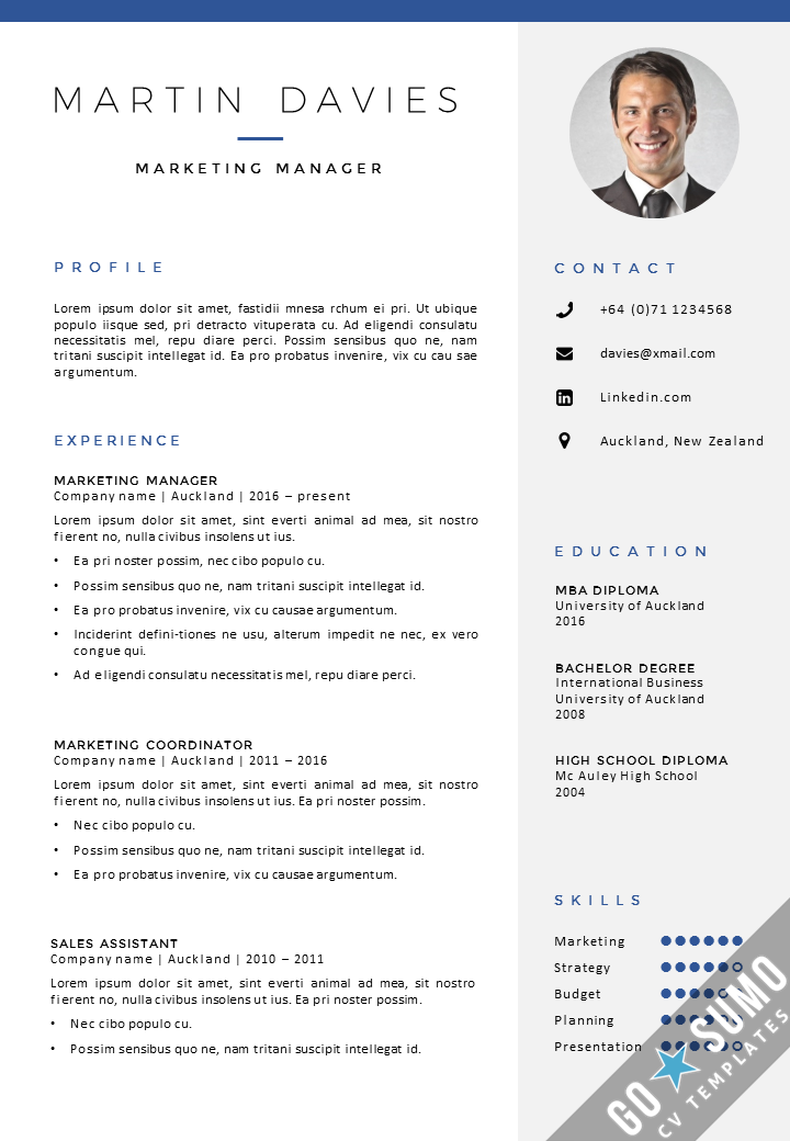 Template Curriculum Vitae Professional Resume  Curriculum Vitae  Cv Design Template In Ms