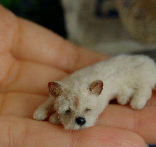 OOAK Dollhouse Realistic Miniature 1 12 ♥ Cairn Terrier Dog Sleeping ♥ Handmade   eBay