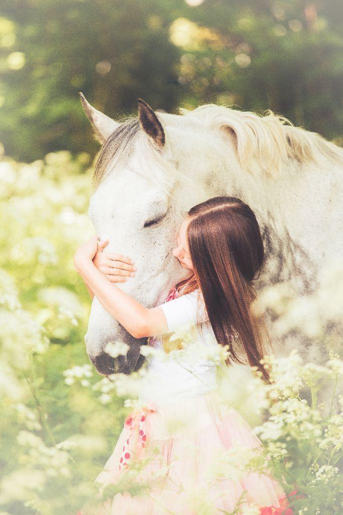 Pferde - Minh Dan Vu -  - #fotografie