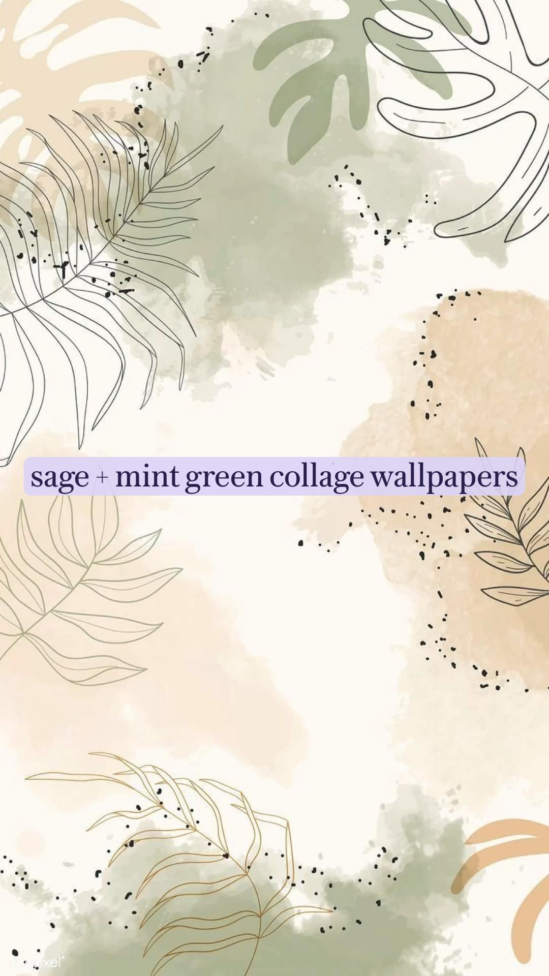 sage + mint green wall collage wallpapers #sage #mint #wallcollage #bedroomdecor #aestheticwallpaper