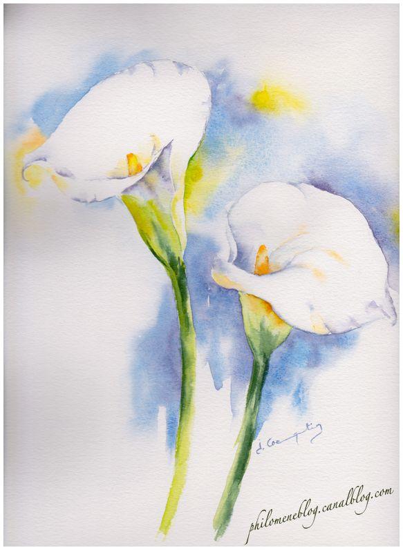 Aquarelle arum du jardin flores pinterest du for Pinterest aquarell