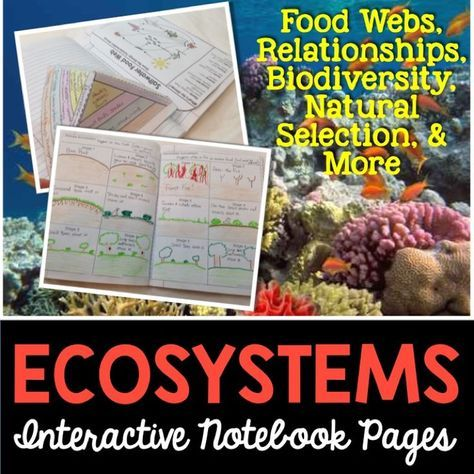 an amazing set of templates that covers abiotic and biotic factors biodiversity biomes relationships of organisms natural selection food chains food