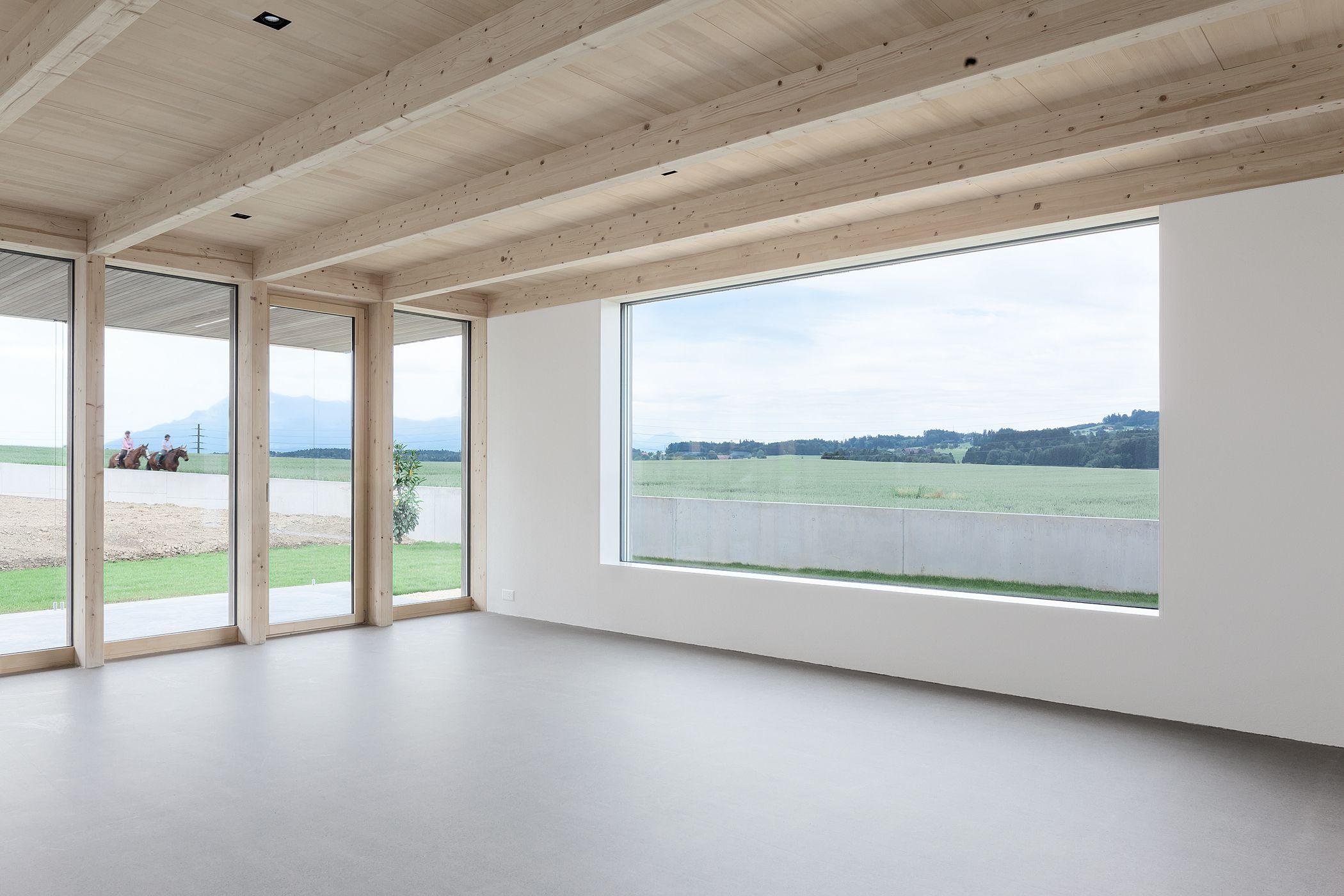 Einfamilienhaus Feldhöhe blgp architekten ag windows