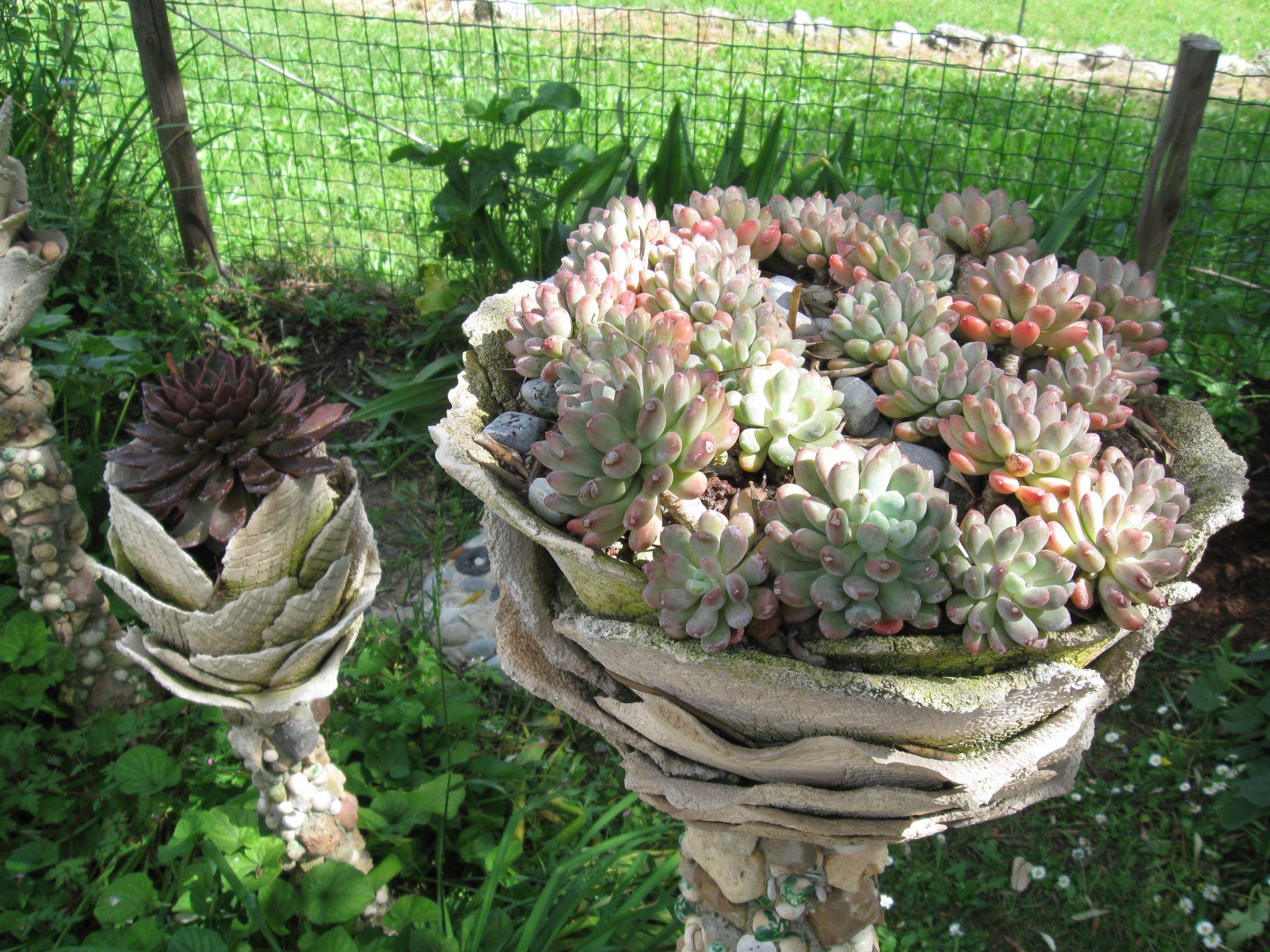f90d866943da5522a44bfd530eae261c Luxe De Fleurs De Jardin Des Idées
