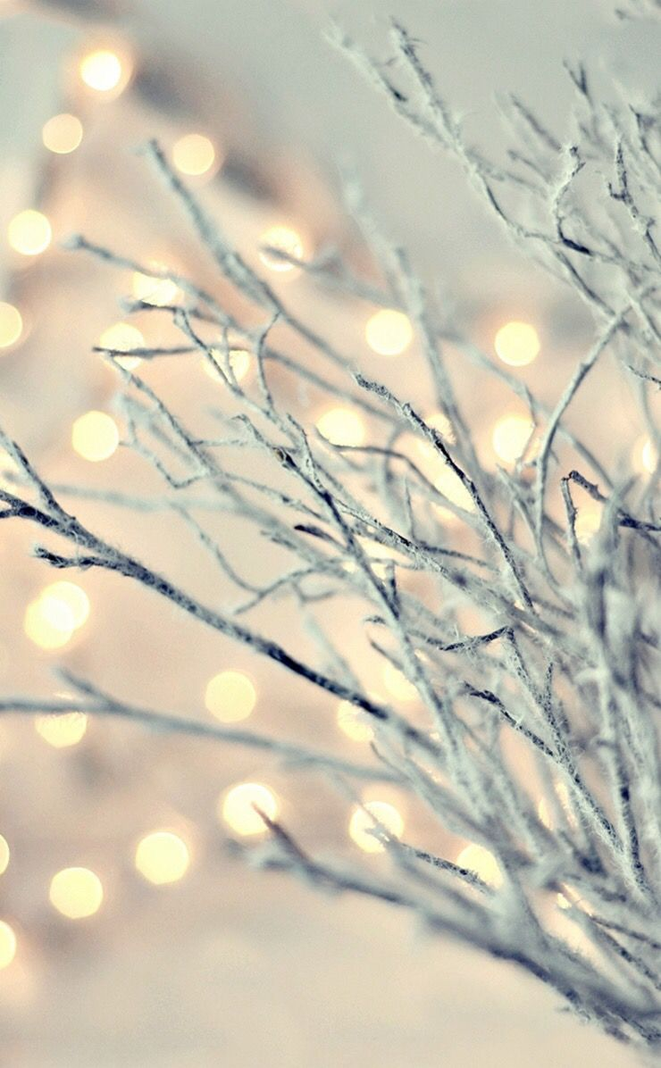 Sparkling winter branches | Wallpaper | Pinterest