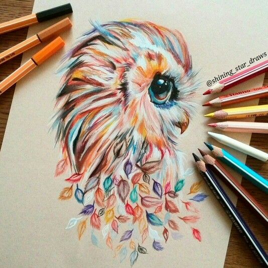 Rainbow Ish Owl With Images Drawings Cool Drawings Owls Drawing