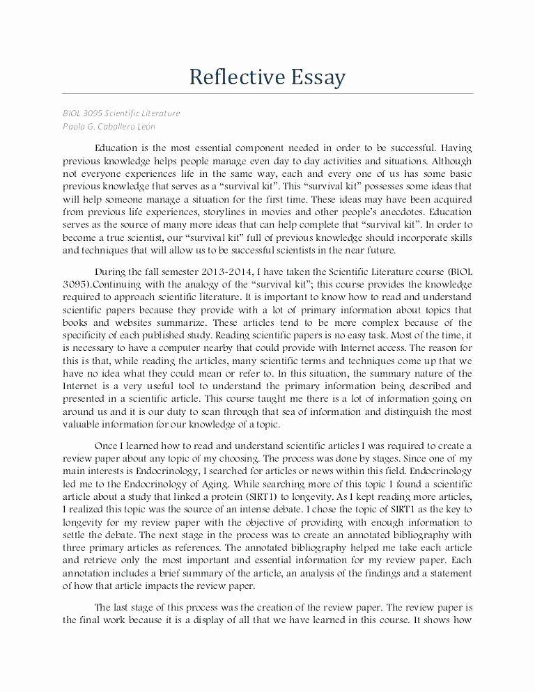 Personal Reflective Essay Example New Reflection Administrativelawjudge Self Introduction
