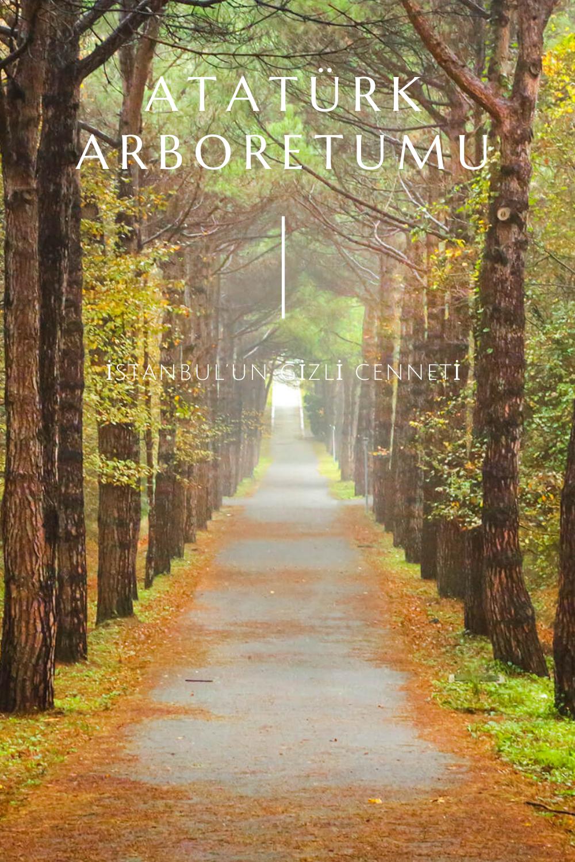 Atatürk Arboretumu Nerede? Giriş Ücreti   Detaylı Gezi Rehberi, 2020    Geziler, Seyahat rehberi, Istanbul