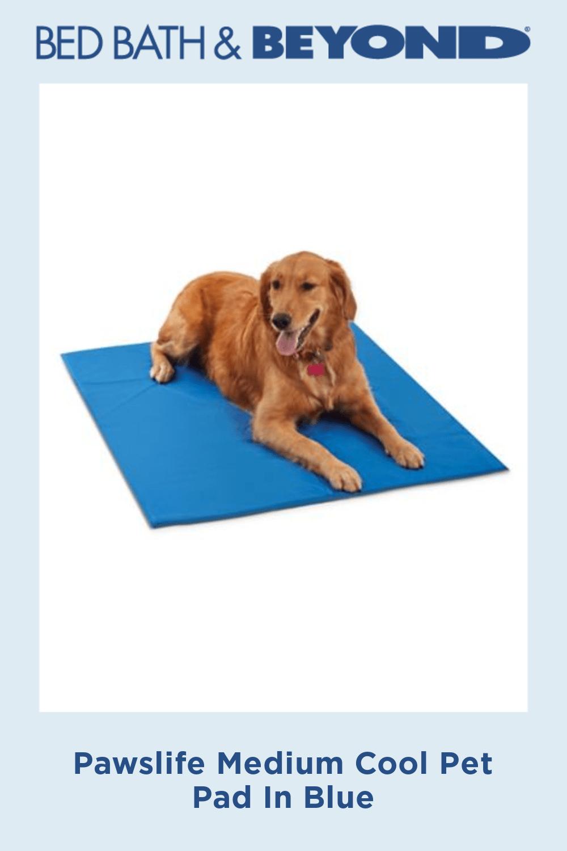 Pawslife Medium Cool Pet Pad In Blue Pet Pads Cool Pets Cool