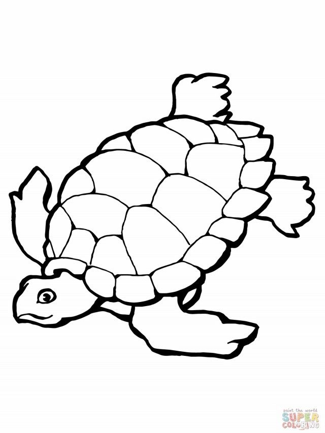 Turtle Sea Turtle Coloring Pages Printable Coloring Book Ideas Turtle Coloring Pages Ocean Coloring Pages Animal Coloring Books