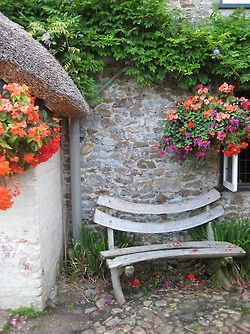 every garden should have a quiet corner where you can take time to contemplate