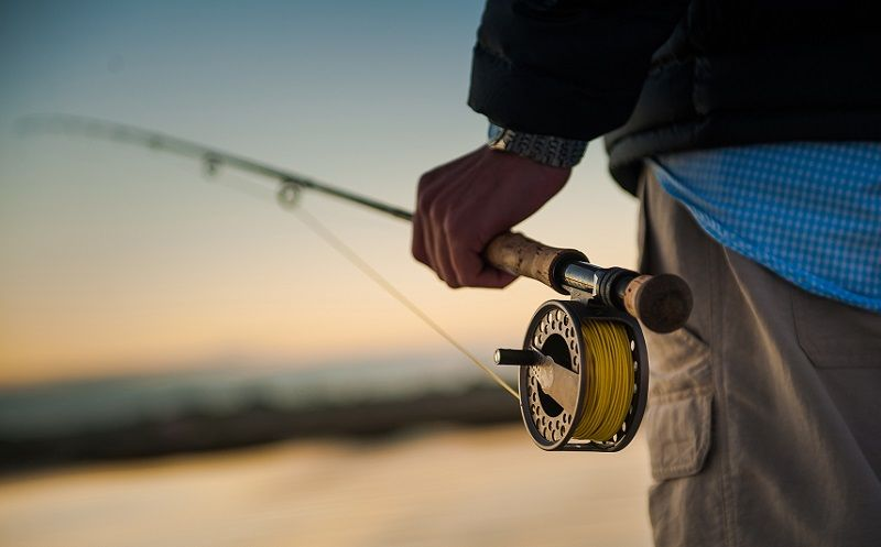 Sport Fly Fishing Rods Market Research Report 2019-2025 | Best fly fishing  rods, Fly fishing, Fly fishing rods