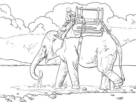 Riding An Asian Elephant With Howdah Coloring Page Elephant