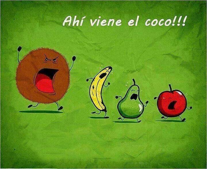 El coco!!!!