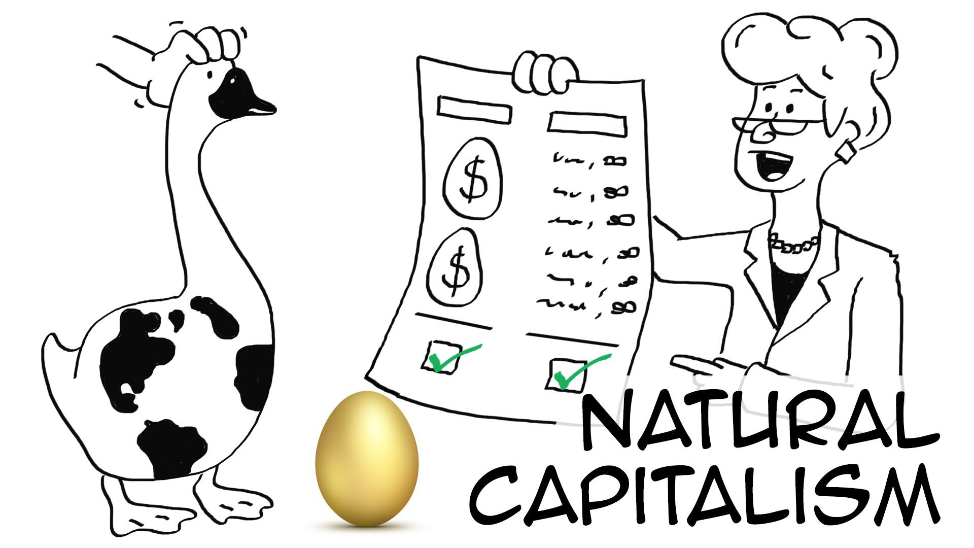 Natural Capitalism, a video by Sustainability Illustrated