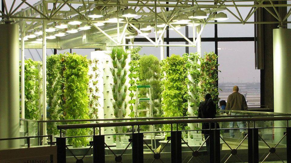 aeroponics - Google Search | Ecology design, Hydroponics ...