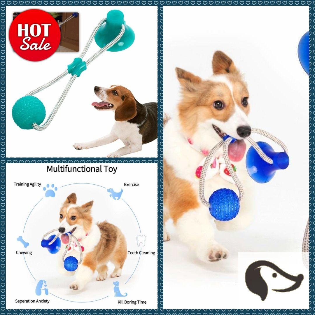 Flexible Dog Molar Bite Toy Dog Dogs Puppy Dogshopping