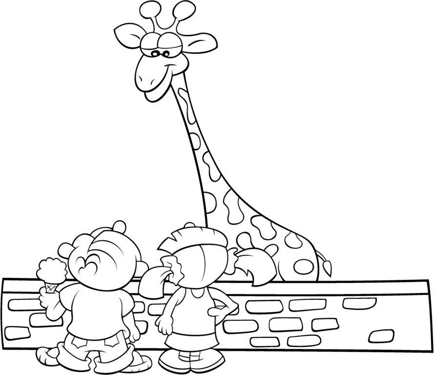 Desenho Para Colorir Zoologico Pesquisa Google Com Imagens