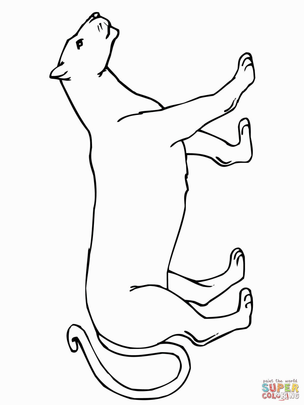 Mountain Lion Coloring Page Lion Coloring Pages Mountain Lion