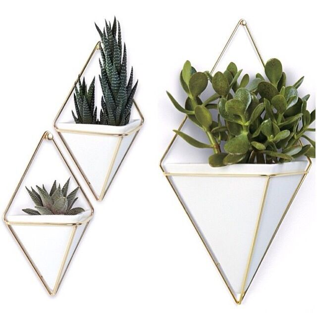 Bring The Indoors Out With The Umbra Trigg Wall Vessel