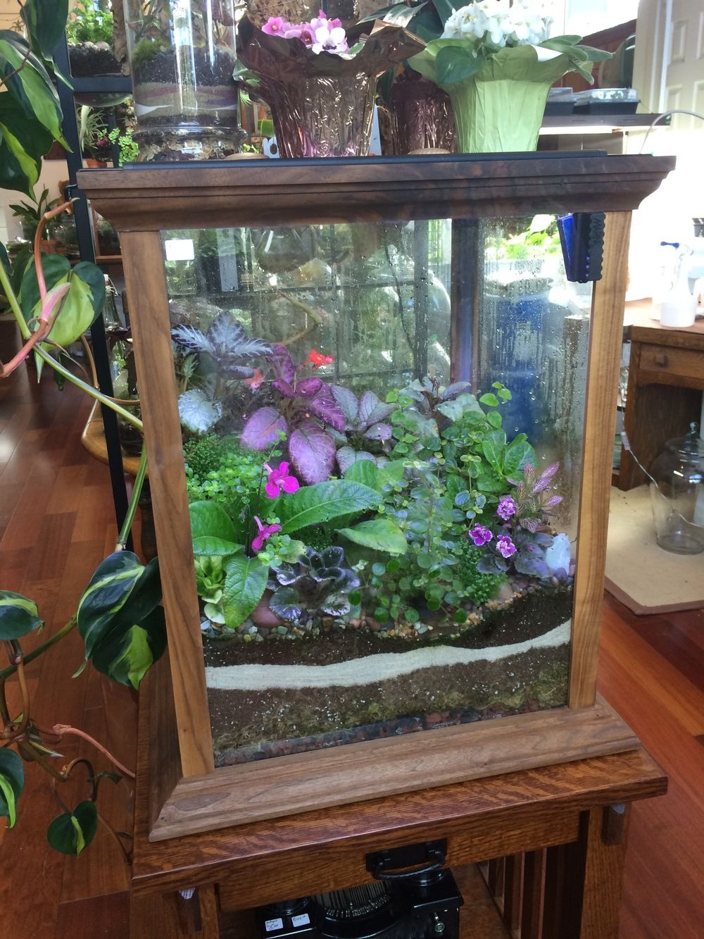 A Beautiful Terrarium With Deep Greens And Purples From