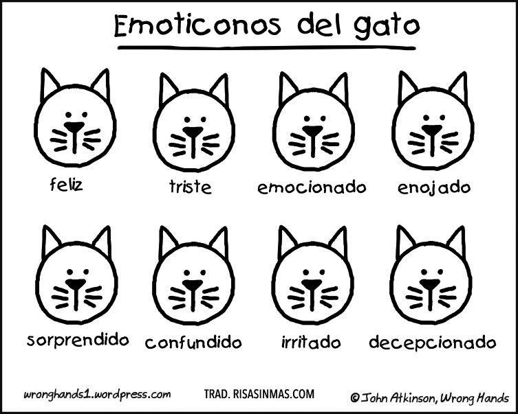 Emoticonos del gato: feliz, triste, emocionado, enojado, sorprendido, confudido, irritado, deceptionado.
