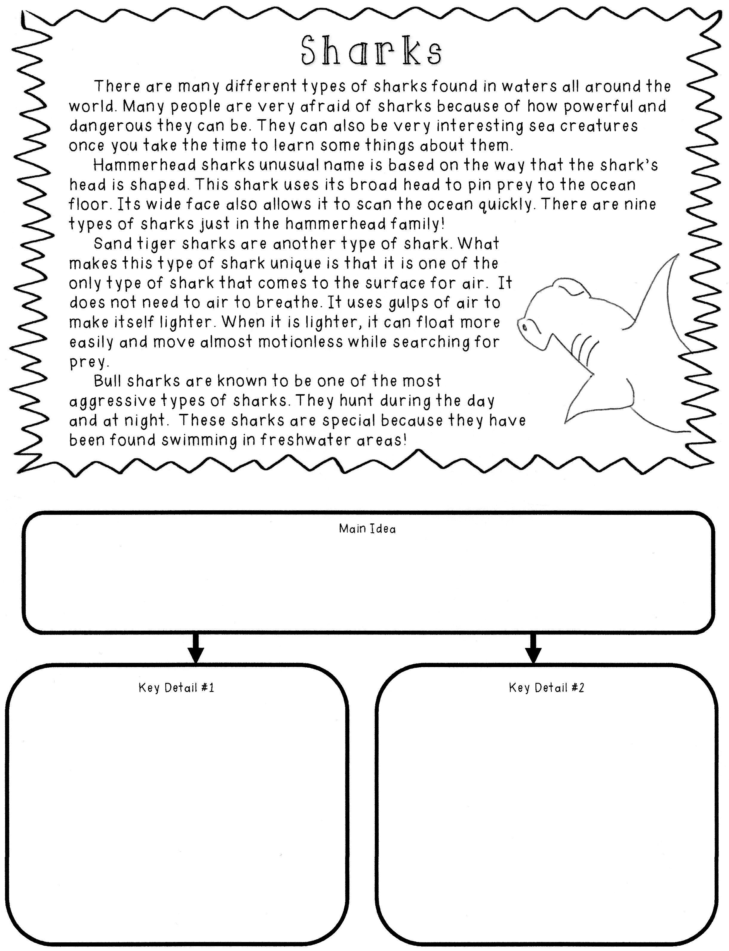medium resolution of A great way to teach determining main idea and locating key details!!!    Main idea