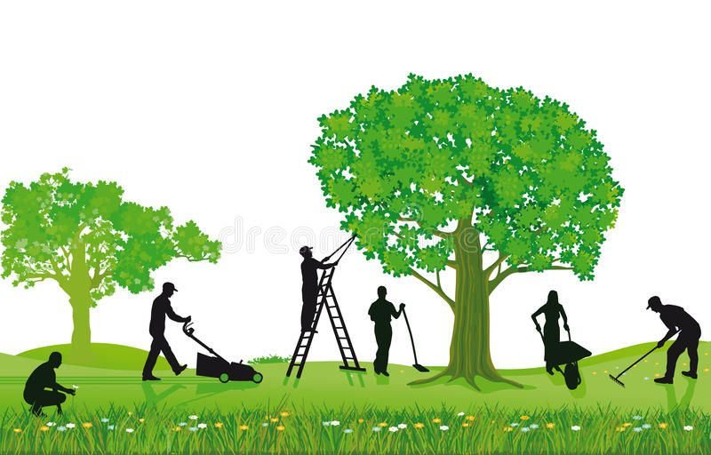 Crew Of Landscapers Working Outdoors Crew Of Workers Landscaping Pruning Mowi Spon Outdoors Workers Work In 2020 Landscape Spring Landscape Landscape Trees