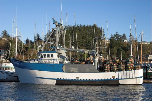 Commercial fishing boats at the dock fishing boats for Newport oregon fishing