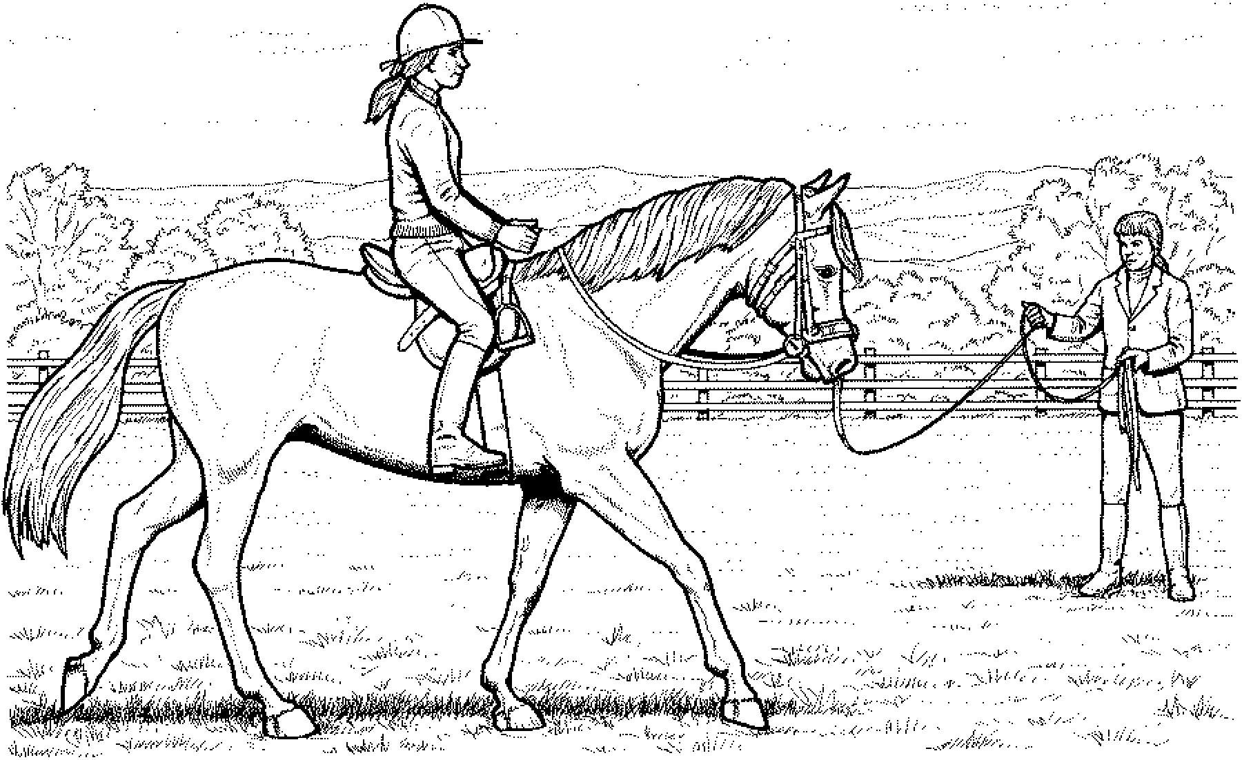 Ausmalbilder Pferde 05 | Ausmalbilder pferde, Ausmalbilder ...