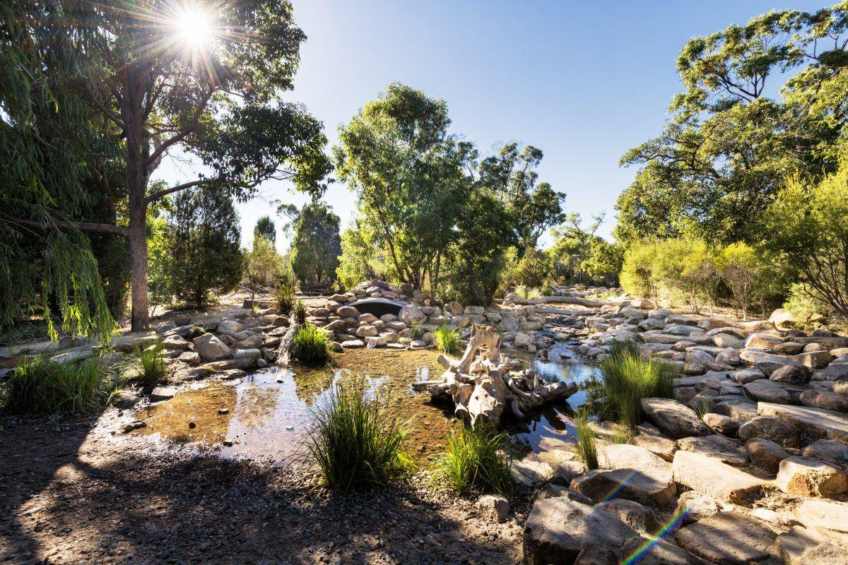 naturescape rio tinto park kings