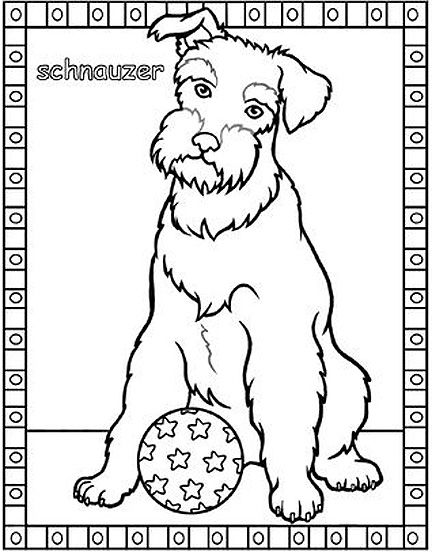 Schnauzer Dog Coloring Page Coloring Pages Cat Coloring Page