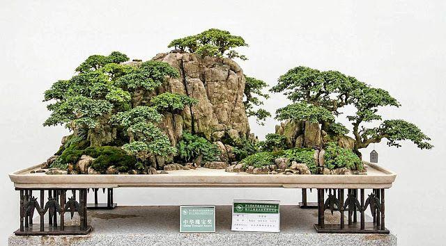 Chinese Landscape Jardin Bonsais Paysage Chinois Jardin Japonais