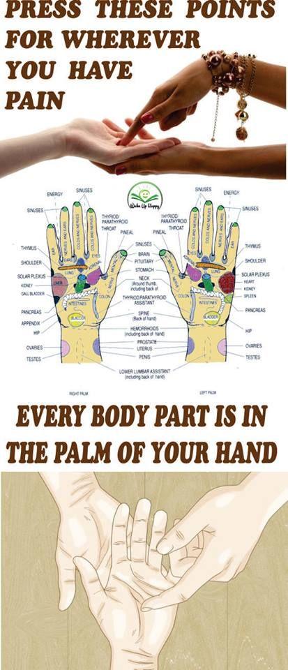 Palm Reflexology | Health Notes | Reflexology, Reflexology ...